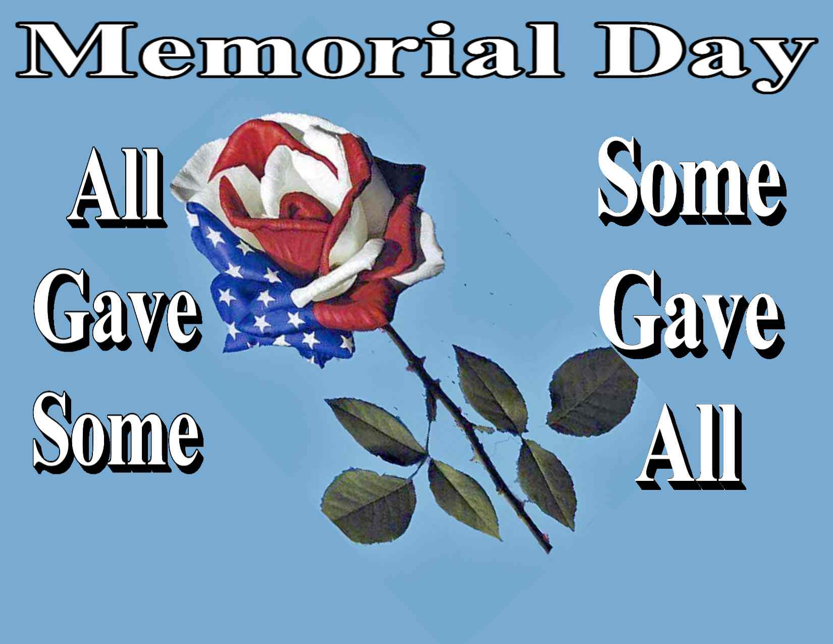 Memorial day rose jpeg